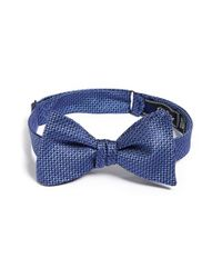 David Donahue | Blue Silk Bow Tie for Men | Lyst