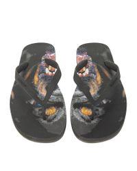Givenchy - Black Rottweiler Flip Flops for Men - Lyst