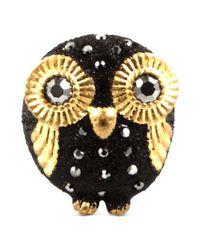 RACHEL Rachel Roy - Ring Goldtone Glass Stone Black Glitter Owl Ring - Lyst