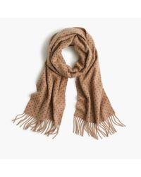 J.Crew | Natural Cashmere Scarf In Dot for Men | Lyst