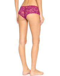 Honeydew Intimates - Purple Camellia Lace Hipster Panties - Lyst