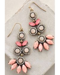 Anthropologie - Pink Sayulita Earrings - Lyst