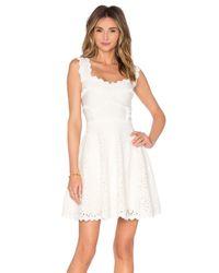 Lolitta - Multicolor Scallop-Detail Jersey Mini Dress - Lyst