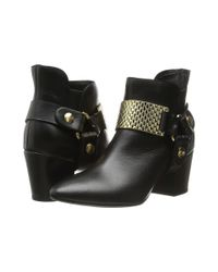 Just Cavalli | Black Low Heel Bootie With Gold Hardware | Lyst