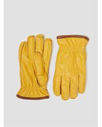 Hestra - Ornberg Gloves Yellow for Men - Lyst