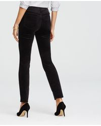 Ann Taylor | Black Tall Kate Velvet Skinny Leggings | Lyst