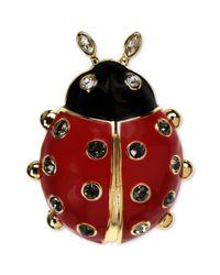 Jones New York - Red Goldtone Ladybug Pin - Lyst