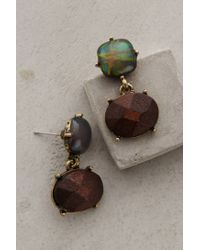 BaubleBar - Brown Eidothea Drops - Lyst
