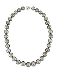 Belpearl | Gray Tahitian Round Pearl Necklace | Lyst