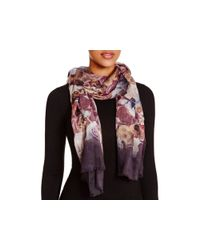 Echo - Black Rose Bed Ombre Scarf - Lyst