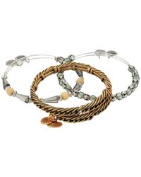 ALEX AND ANI - Metallic Eve Bracelet Set Of 3 - Lyst