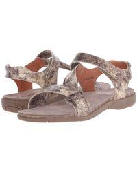 Taos Footwear - Brown Zeal - Lyst