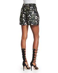 Giambattista Valli - Black Daisy-print Floral Shorts - Lyst