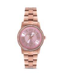 Ted Baker - Pink Crystal Embellished Bezel Watch, 34mm - Lyst