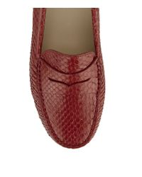 Tod's - Red Gommino Snakeskin Driving Shoe - Lyst