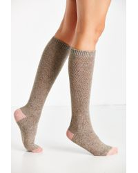 Urban Outfitters | Brown Colorblock Basic Knee-high Sock | Lyst