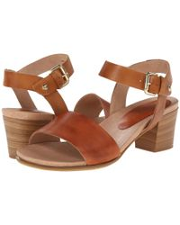 Pikolinos | Brown Cabo Verde W1a-0608 | Lyst