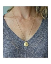 Peyton William Handmade Jewelry | Natural Sand Dollar 18kt Gold Filled Necklace | Lyst