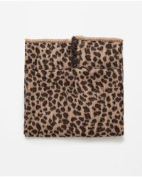 Zara | Brown Animal Print Scarf | Lyst