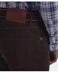Hackett Brown Moleskin Jeans for men