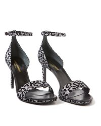 Saint Laurent - Gray Jane Leopard Sandals - Lyst