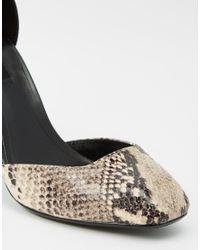 Mango | Black Snake Effect Block Heeled Shoe | Lyst