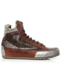 Candice Cooper - Brown Lion Leather High Top Trainers - Lyst