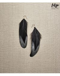 Tokyo Darling | Black Feather Earrings | Lyst