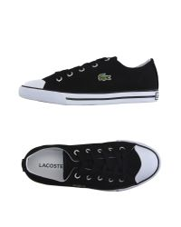 Lacoste - Black Low-tops & Trainers - Lyst