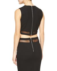 Elizabeth and James - Black Otto Mesh-trim Crop Top - Lyst