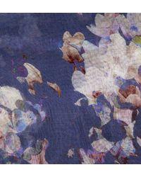 Hobbs - Blue Tabitha Floral Scarf - Lyst