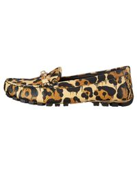 COACH | Multicolor Kimmie Loafer | Lyst