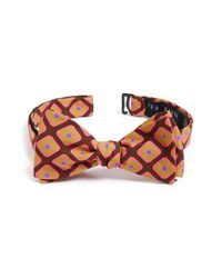 Ted Baker | Brown 'mogador Squares' Silk & Cotton Bow Tie for Men | Lyst