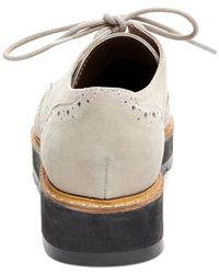 Steve Madden | Gray Tracey Lace-up Oxfords | Lyst