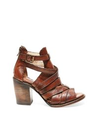 Freebird by Steven - Brown Claw Leather Booties - Lyst