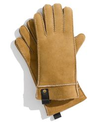 UGG | Brown Genuine Shearling Gloves for Men | Lyst