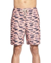Tailor Vintage | Pink Whale Print Swim Trunks for Men | Lyst