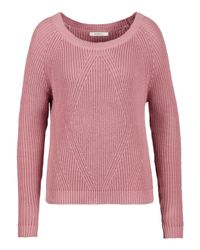 Sandwich | Pink Nostalgic Rose Cotton Jumper | Lyst