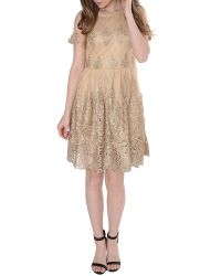 True Decadence - Metallic Lace Skater Dress - Lyst