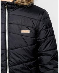 Jack & Jones | Black Padded Jacket With Faux Fur Hood for Men | Lyst