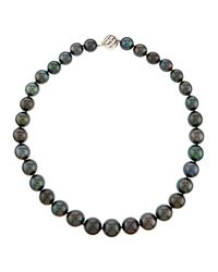 Belpearl | Black 14k Mixed Tahitian Pearl Necklace | Lyst