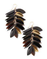 Ashley Pittman - Metallic Tanzu Dark Horn & Leaf Earrings - Lyst