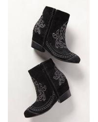 Matisse - Black Phoenix Ankle Boots - Lyst