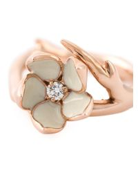 Shaun Leane | Pink Cherry Blossom Ring | Lyst