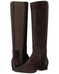Aquatalia - Brown Aquatalia Federica Suede Equestrian Boot - Lyst