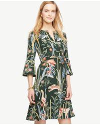 Ann Taylor   Green Reed Garden Fluted Sleeve Dress   Lyst