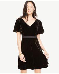 Ann Taylor - Black Short Sleeve Velvet Dress - Lyst