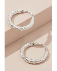 Anna + Nina - Metallic Textured Mini Hoop Earrings - Lyst