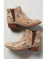 Seychelles   Multicolor Evie Snakeskin Boots   Lyst