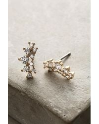 Anthropologie | Metallic Amerie Crawler Earrings | Lyst